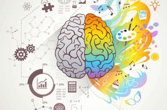 Sağ Beyin vs. Sol Beyin